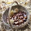 Chestnuts In a wicker Basket — Stock Photo