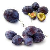 Set of plums — Stock Photo