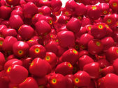 Close-up of Red ripe apples isolated — Stock Photo