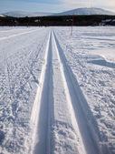 Cross-country tracks — Stock Photo