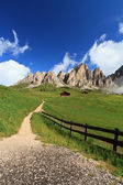 Path in Gardena pass — Stock Photo