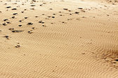 Sand with footprints — Stock Photo