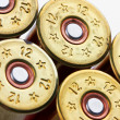 Shotgun shells - Stock Photo