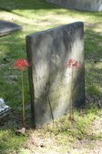 Old Gravestone with Flowers — Stock Photo