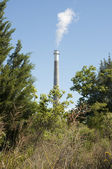 Smoke Stack with Trees in Foreground — Stock Photo