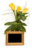 Beautiful bouquet of callas and golden frame on a white — Stock Photo