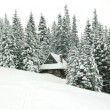 Stock Photo: Winter house