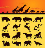 Set of silhouettes of animals from africa. — Stock Vector