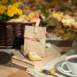 Fall picnic — Stock Photo