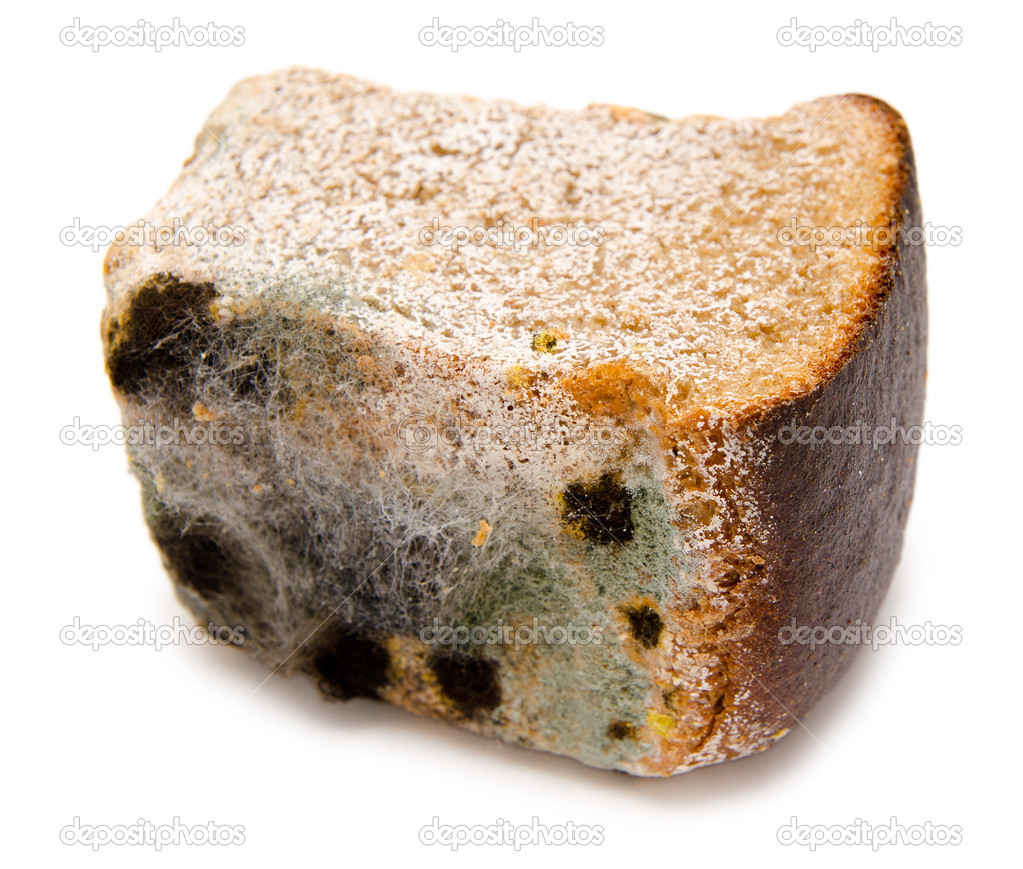 Half a loaf of mouldy rye bread  Stock Photo #7467317