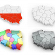 Three-dimensional map of Poland — Stock Photo