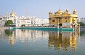 Golden temple, Amritsar, India — Stock Photo