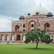 Humayun's tomb stairs, Delhi, India — Stock Photo