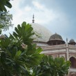 Humayun&#039;s tomb, Delhi, India - Stock Photo