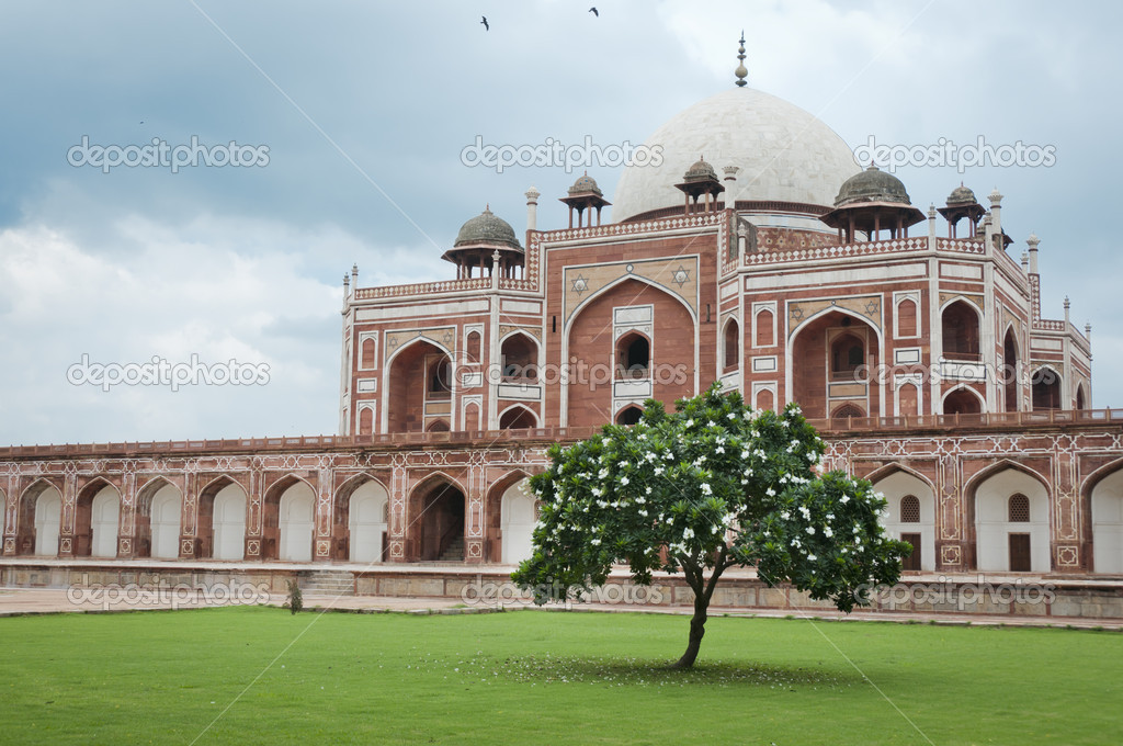 Flowering tree and Humayun's tomb in Delhi, India as an example of early Mughal architecture — Stock Photo #6828026