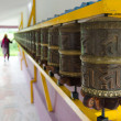 Woman and prayer wheels in a row - Stok fotoğraf