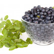 Blueberries in a glass bowl — Stock Photo