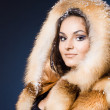 Beautiful woman in a fur coat — Stock Photo #7864707
