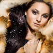 Stock Photo: Beautiful woman in a fur coat