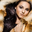 Stock fotografie: Beautiful woman in a fur coat