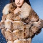 belle femme dans un manteau de fourrure — Photo #7865095