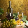 White wine still life — Stock Photo