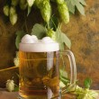 Beer with hops — Stock Photo