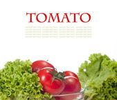 Tomato — Photo