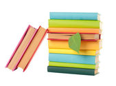 Green leaf bookmark in a book — Stock Photo