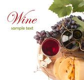 Víno a hroznovou — Stock fotografie