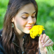 Scent of Dandelion — Stock Photo