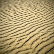 Evening puckered texture of sand desert — Stock Photo #6970606