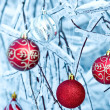 Beautiful Christmas red balls over snowy branches - Stock Photo