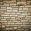 Persistence concept, background of brick wall texture — Stock Photo #7291798