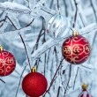 Beautiful Christmas red balls over snowy branches - Stockfoto