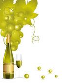 Illustration champange bottle,glass,grapes vines — Stock Vector