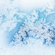 Winter rime background — Stock Photo #7183635