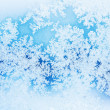Winter rime background — Stock Photo #7183637