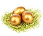Golden easter eggs in nest isolated — Stock Photo
