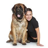 Beautiful woman and English-mastif dog — Stok fotoğraf