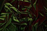 Velvet fabric — Stock Photo