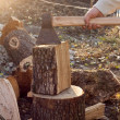 图库照片: Chopping wood