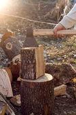 Rębaki drewna — Zdjęcie stockowe