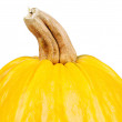 Fresh pumpkin — Stock Photo