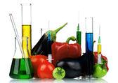Genetically modified organism — Stock Photo