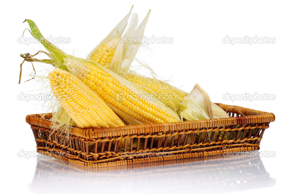 Fresh an ear of corn with green leaves on a white background — Stock Photo #7128459