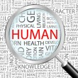 HUMAN. Magnifying glass over seamless background with different association terms. — 图库矢量图片