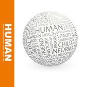 HUMAN. Globe with different association terms. — Stock Vector