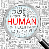 HUMAN. Magnifying glass over seamless background with different association terms. — Stockvector
