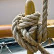 Marine knot detail — Stock Photo